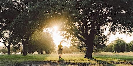 Trees for Beauty Walk in Richmond Park tickets