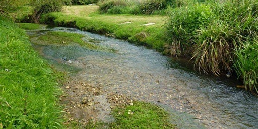 Free talk by the Wild Trout Trust