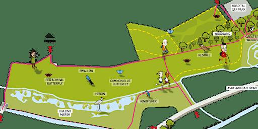 Bringing together biodiversity and flood mitigation-Chester Wetland Centre