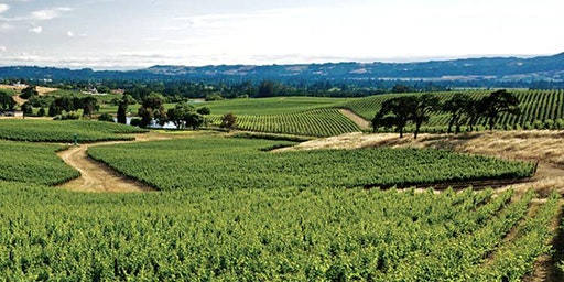 Sip and Learn: All-Stars of E&J Gallo Winery