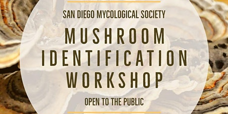 SDMYCO Mushroom Identification Workshop tickets