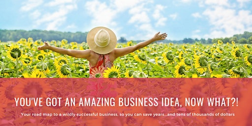 You've Got An AMAZING Business Idea...Now What?! {FREE Online Training}