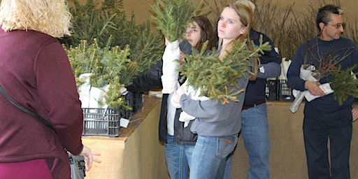 Clear Fork FFA & Richland SWCD Tree Seedling Sale