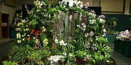 OSGB Orchid Spring Show tickets