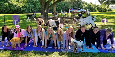 Goat Yoga in the Country - Sat, February 8th @ 10:30 AM tickets