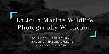 La Jolla Marine Wildlife Photography Workshop tickets