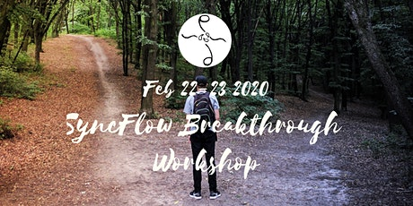 Feb 2020 SyncFlow Breakthrough Workshop tickets