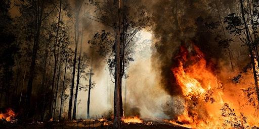 Australian Bushfire Fundraiser - Sunday Cinema Session