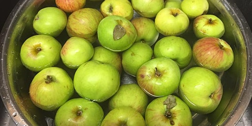 Preservin' for the Hungry: Applesauce! - Parkland