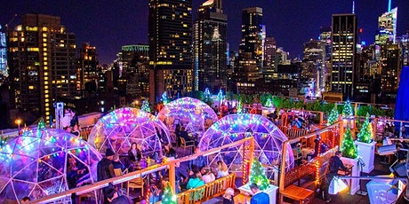 Winter Wonderland Penthouse Party at 230 Fifth Rooftop tickets