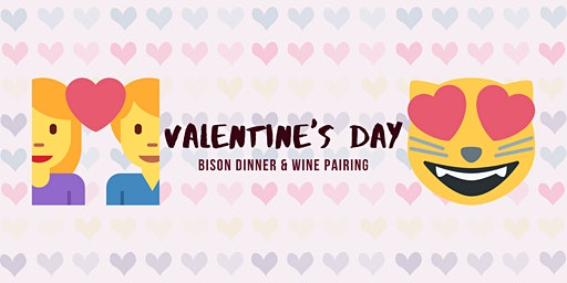 Bison Dinner & Wine Pairing