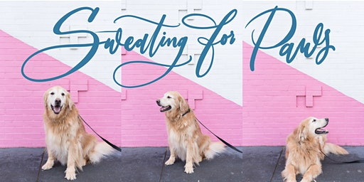 Sweating for Paws with White Ink Calligraphy