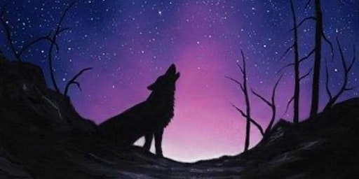 Starry Night with Wolf