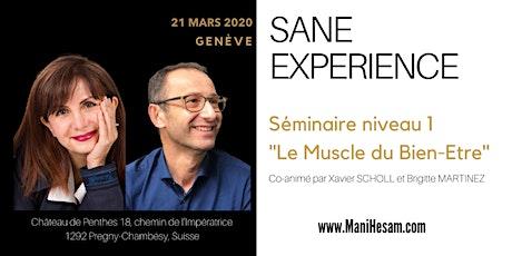 Séminaire SANE Expérience niveau 1 à Genève, animé par Brigitte Martinez & Xavier Scholl  billets