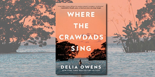 The Davisville Travel Book Club  - Where the Crawdads Sing by Delia Owens