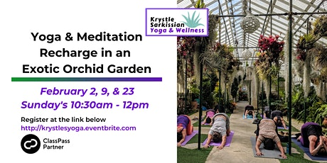 Yoga Recharge in an Exotic Orchid Garden (2/2) tickets