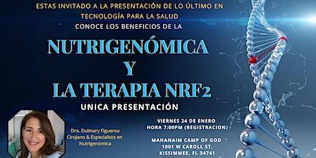 Nutrigenómica y Terapia NRF2  ingressos