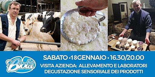 Visita Azienda Biolà e Degustazione Sensoriale