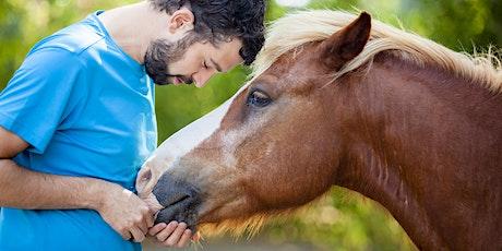 Man, ontdek jouw pad - coachen met paarden tickets