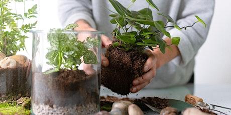 Terrarium Workshop - Succulent Garden tickets