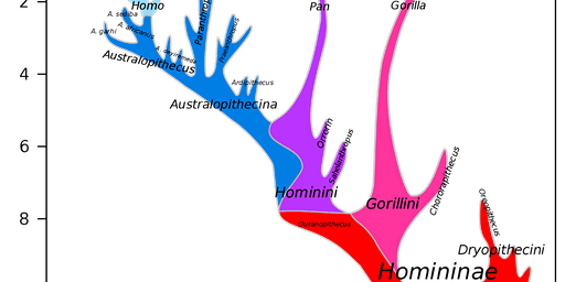 Introduction to Evolutionary Genetics (part 1 Feb 15, part 2 on Feb 29)