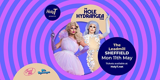 The Hole Hydranga Tour - Sheffield - 14+