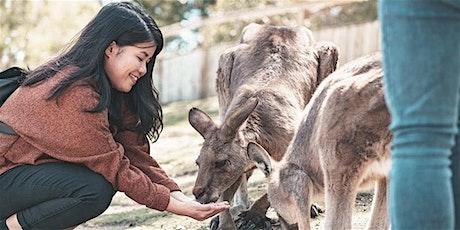 UTASLife Tour Bonorong Wildlife Sanctuary and MONA: Hobart tickets