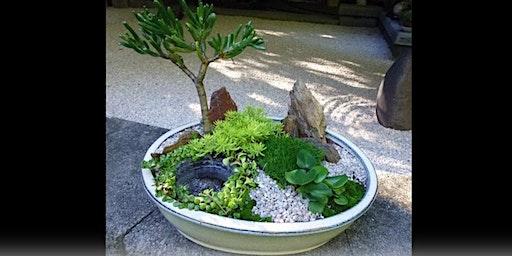 Miniature Japanese garden workshop