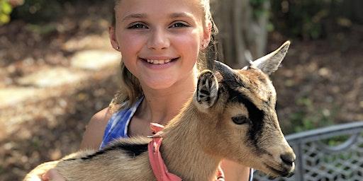 Beginner Goat Yoga-Gentle Flow