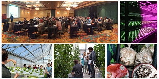 19th UA-CEAC Greenhouse Crop Production & Engineering Design Short Course