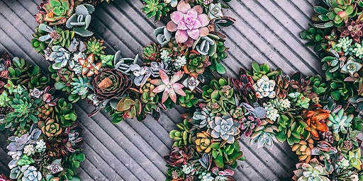 Spring Succulent Wreath Workshop