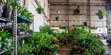 Sydney - Huge Indoor Plant Warehouse Sale - Jungle Plant Party tickets