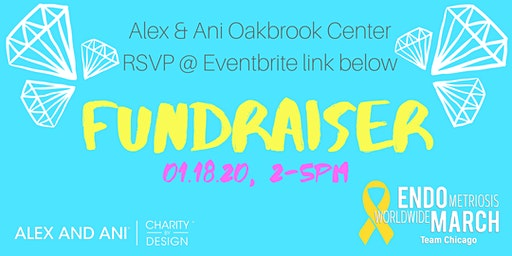 Alex and Ani + EndoMarch Chicago Fundraiser