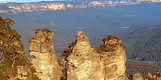 Blue Mountains Tourism Bush Fire Recovery Forum