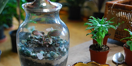 Terrarium Building Workshop tickets