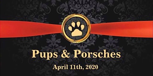 Pups  And Porsches