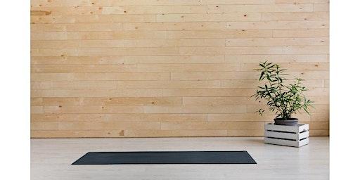 360 Workshop: Integrative Yoga and Meditation