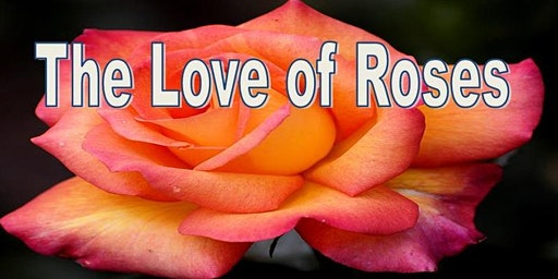 The Love of Roses