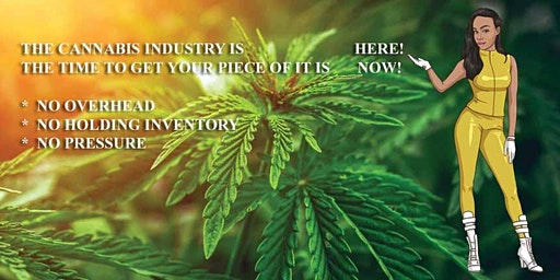 Learn the Health Benefits of CBD & Owning your own Dispensary