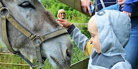 Little Wonders Farm Adventures Parent & Child Group (6 week Programme) tickets