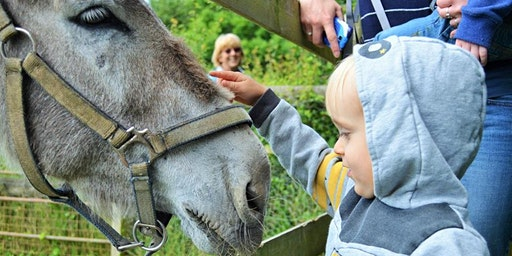 Little Wonders Farm Adventures Parent & Child Group (6 week Programme)