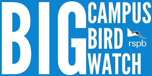 Big Campus Bird Watch- University of Leeds and RSPB (1pm)