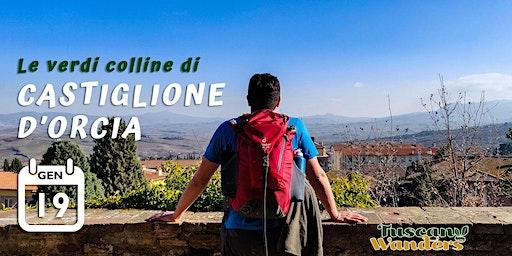 Le Verdi Colline di Castiglione D'Orcia