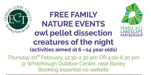 FREE FAMILY NATURE EVENTS - Creatures of the night