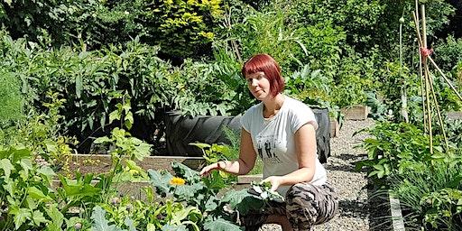 Climate Change Gardening: Growing Food / Garddio Newid Hinsawdd: Tyfu Bwyd