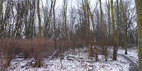 Winter Tree Identification Walk - Birnie and Gaddon Lochs tickets