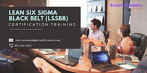 Lean Six Sigma Black Belt (LSSBB) Certification Training in Lévis, PE