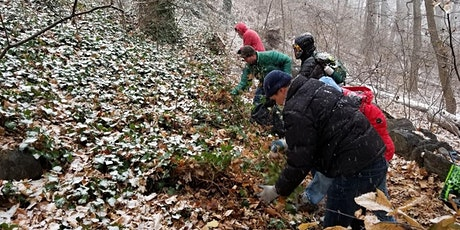 Inwood Hill Park Trail Stewardship Day - February 8 tickets