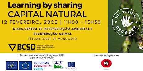 Ciclo Learning by Sharing EDP - Valorização Estratégica do Capital Natural bilhetes