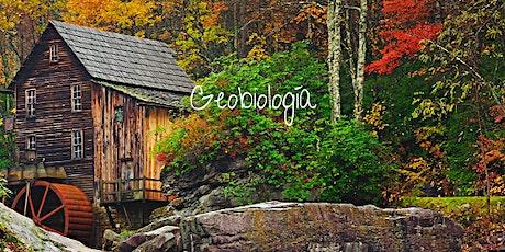Conferencia de Geobiología entradas